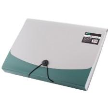 009479 LEVIATAN Dėklas dokumentams su guma ir 6 skyrių D05-225