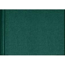100286 KRESKA Albumas eskizams A4 80l 90g/m žalias B04-432