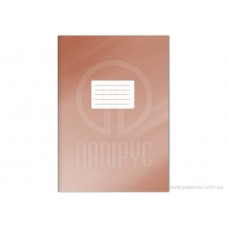 B02-049 Kontorinis sąsiuvinys A4 120l langeliais 20336 PAPIRUS