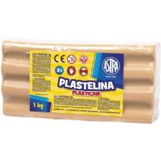 303111003 ASTRA Plastilinas 1kg smėlio spalvos M05-684