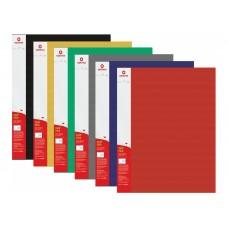 31254 PAPIRUS Aplankas A4 su prispaudimu viduje STRIPE įvairių spalvų D04-140