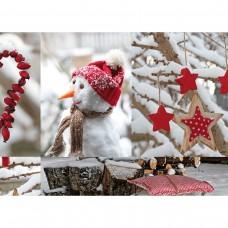 40024059 SUSY CARD Kalėdinis dovanų pakavimo popierius ŽIEMOS SODAS 70x200cm B10-313