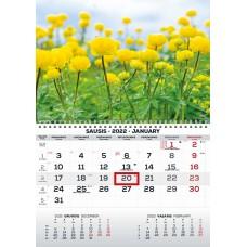 Kalendorius 2022m MONO 2417000007 TIMER, B13-027