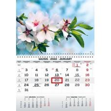 Kalendorius 1-os dalies 2022m MONO, 2417000009 TIMER  B13-0281