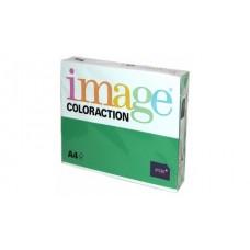 617063 IMAGE Spalvotas spausdinimo popierius A4 80g/m 500l t.žalia/63 B07-556