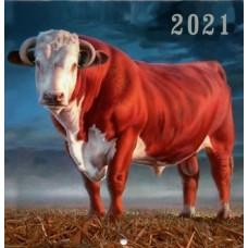 Kalendorius 20x20cm 2021m 9786098064001, B13-706