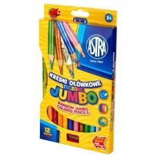312118002 ASTRA, Pieštukai daugiaspalviu grafitu 12 spalvų, R06-034