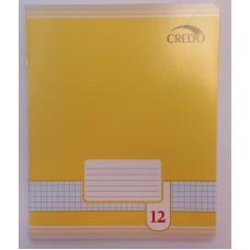 B01-126 Sąsiuvinis 12l langeliais 7113/5 CREDO 20/120