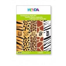 B06-322 Foto kartonas, 23x33cm, 300g/m², 5lapai, dvipusis, 204772205 HEYDA