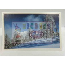 B09-095 Atvirukas su žiemos motyvais WHC