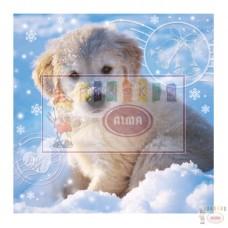 B09-902 3D Kalėdinis atvirukas ŠUNIUKAS 11427622 SUSY CARD