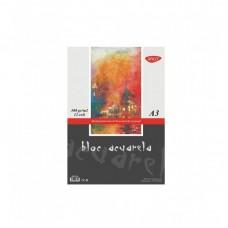 Akvarelinis popierius A3 300g 12l, BD330 DACO, B04-061