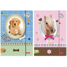 M02-097 Aplankas, A4, Pretty Pets, 10671329, HERLITZ