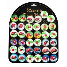 Magnetai BORUŽELĖ MG-7592 ALIGA, P05-539
